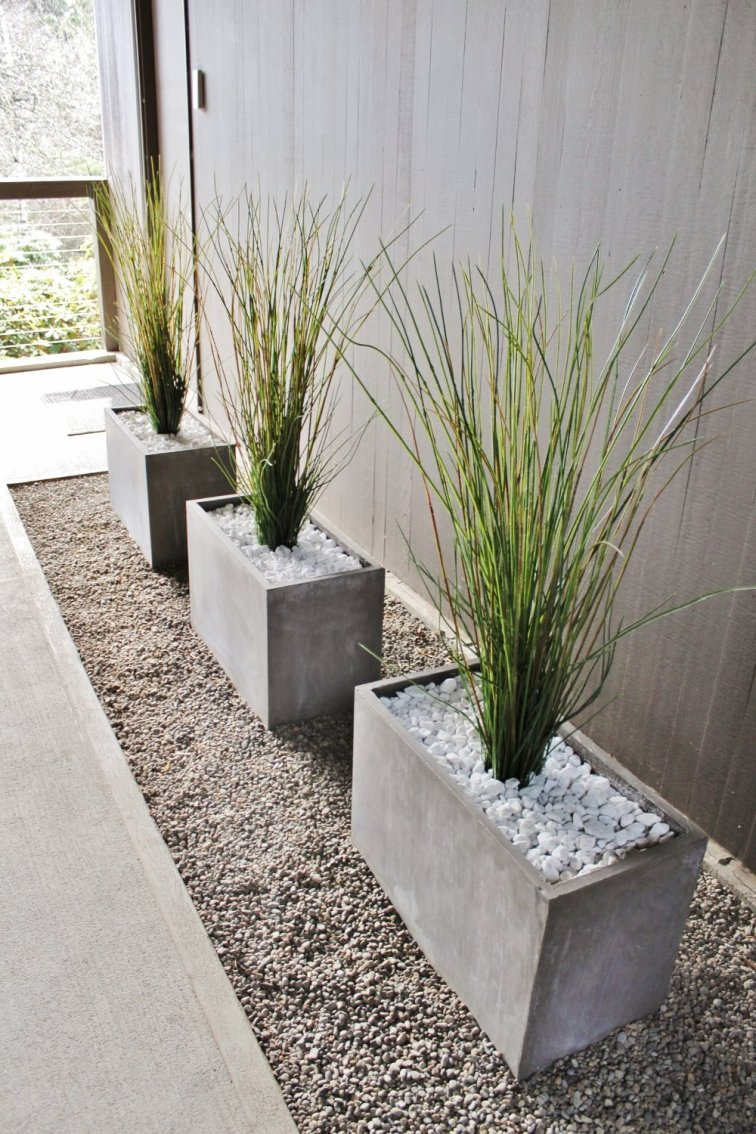 Modern decorative grass in concrete planters in mid-century modern breezeway