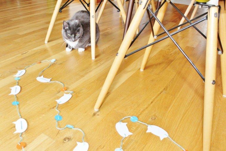 Cat admiring DIY cat party garland