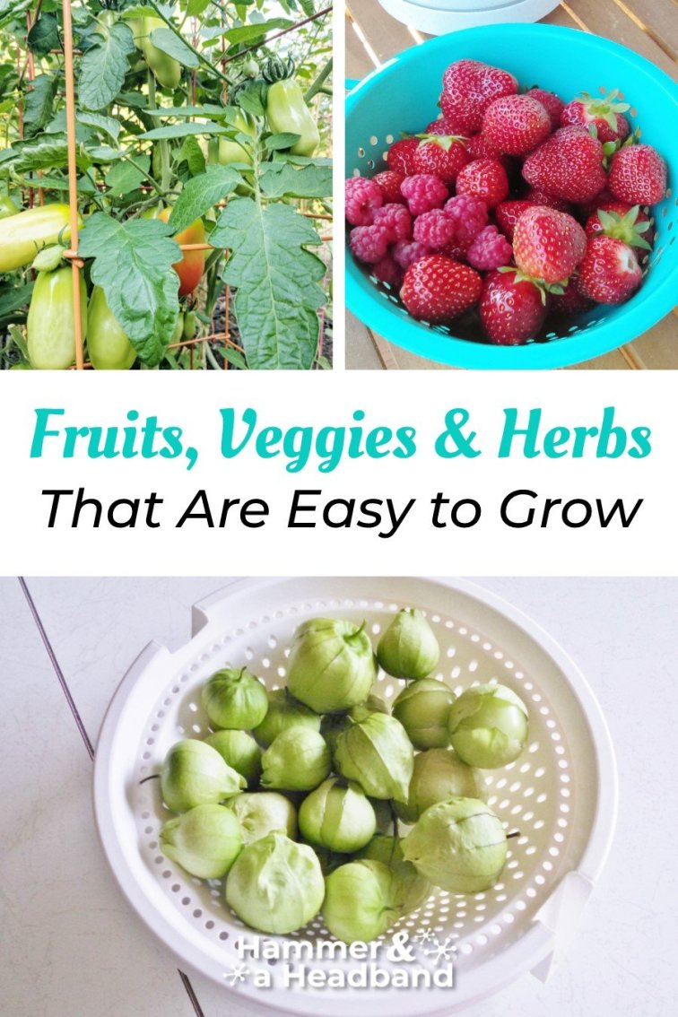 Fruits, veggies and herbs that are easy to grow