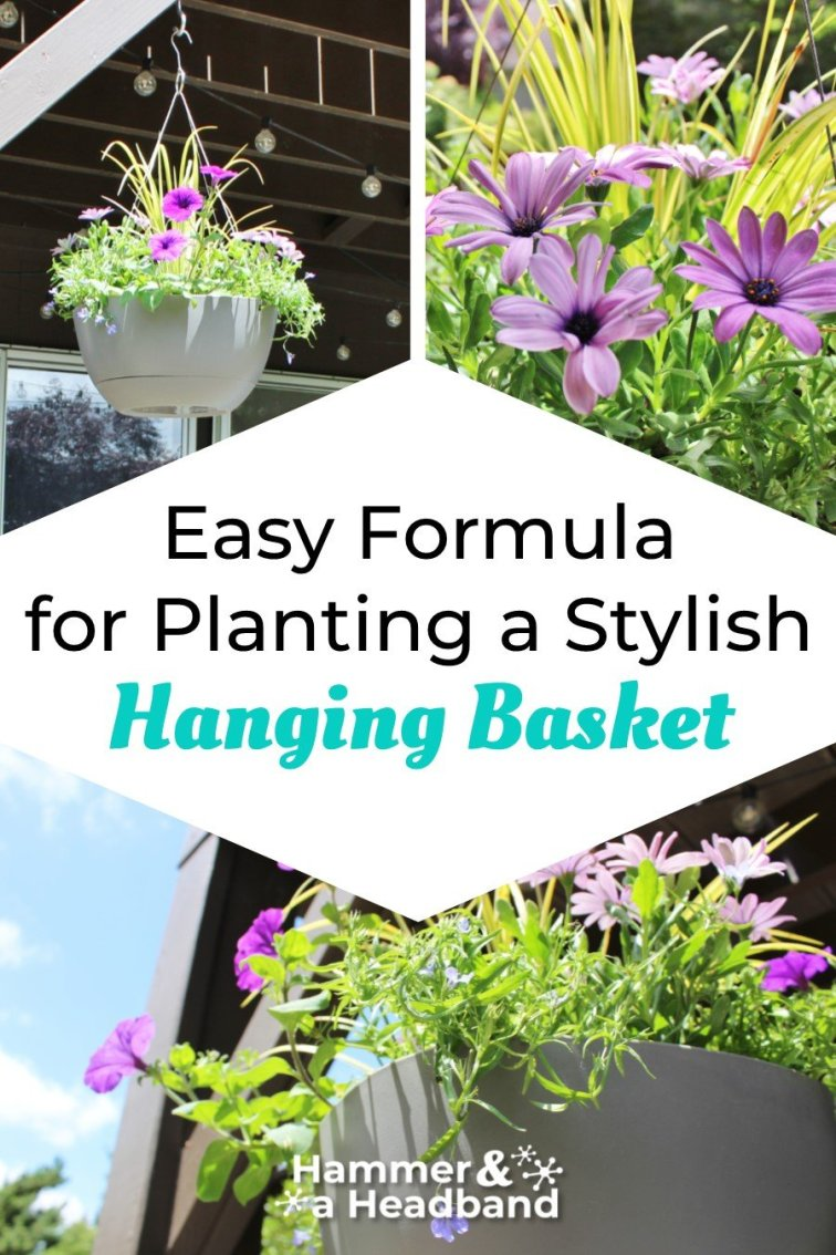 Easy formula for planting a stylish hanging basket