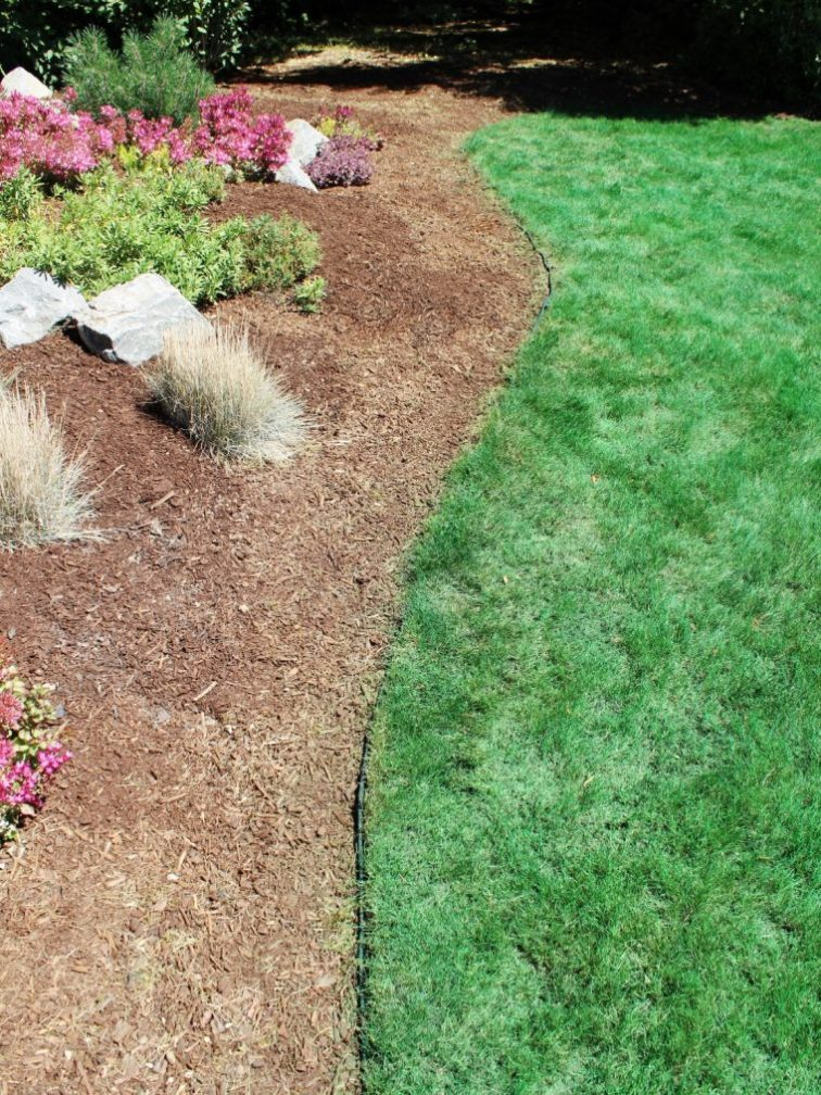 Lawn edging and berm landscaping with mulch