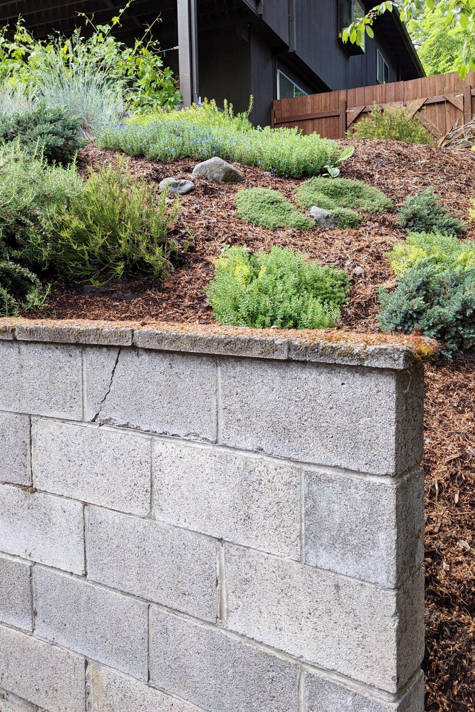 Gray cinder blocks in retaining wall