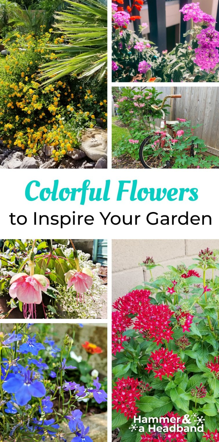 Colorful flowers to inspire your garden