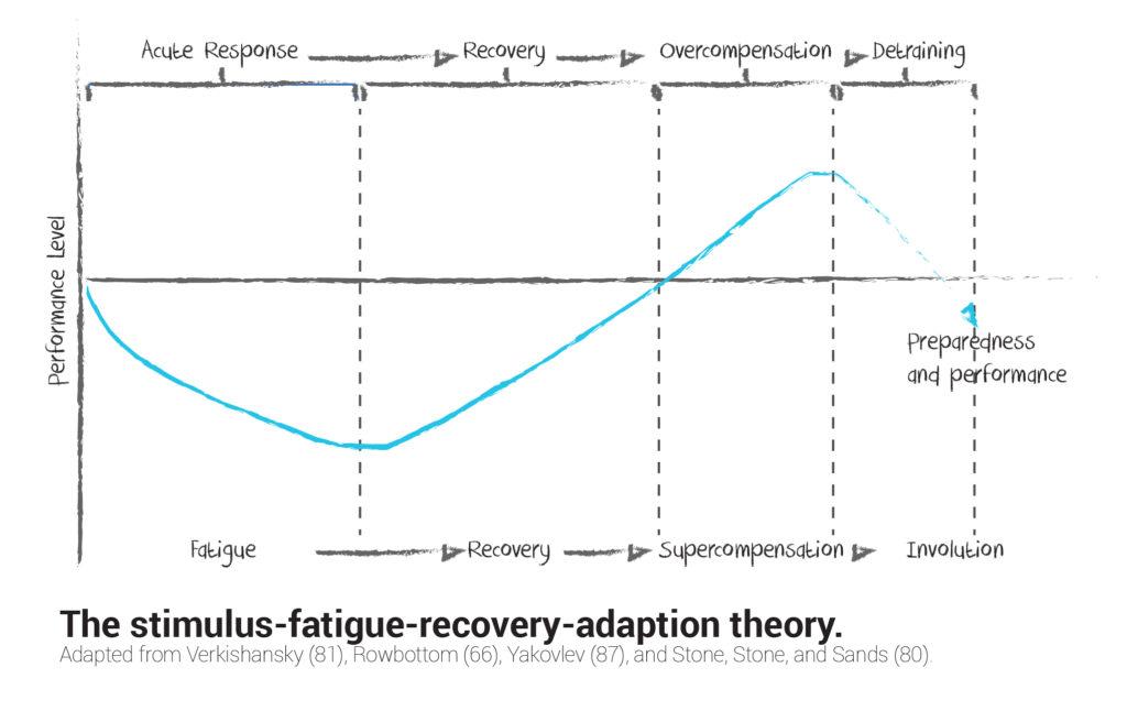 Stimulus Fatigue Theory