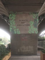 Plants-not-pollution under flyover