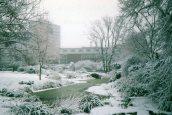 Hammersmith Park, Snow