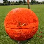 ballonvossenjacht