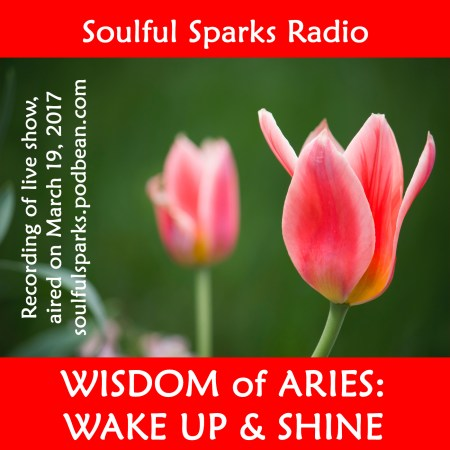 Wisdom of Aries on Soulful Sparks Radio