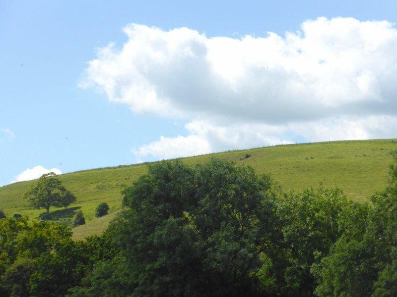 Waller's Troops Mustered on the hills around East Meon