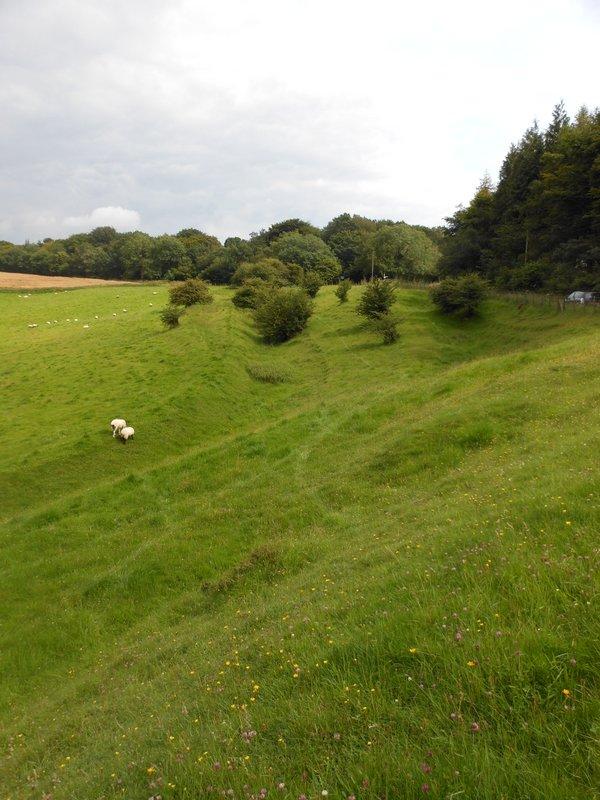 Earthworks on Heydon Down above East Meon