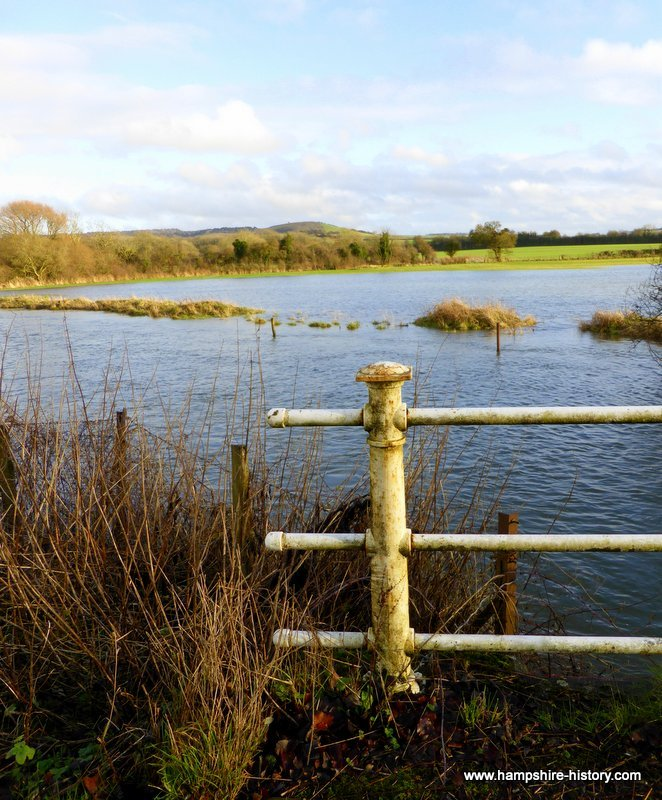 River Meon at Exton