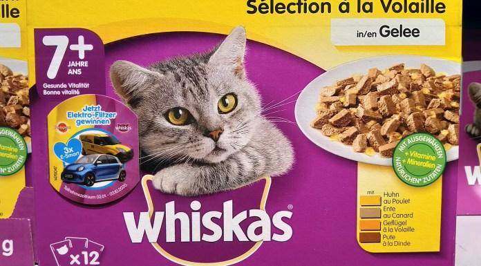 Whiskas - Deutscher Tierschutzbund
