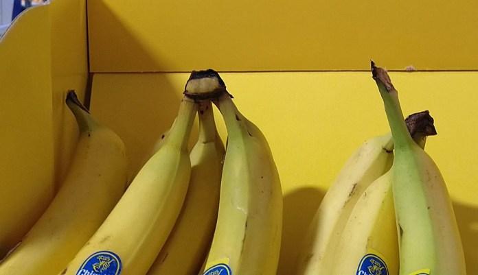 Chiquita: Geschmack gewinnt