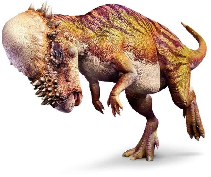 Pachycephalosaurus - One Piece