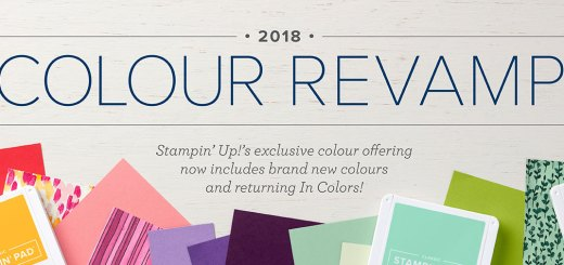 stamipn up colour revamp