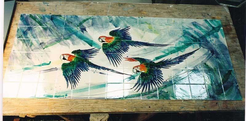 parrots yYspbyty Glan Clwyd hospital