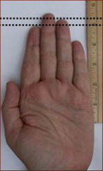 Digit ratio concerns the 2th to 4th finger length difference.