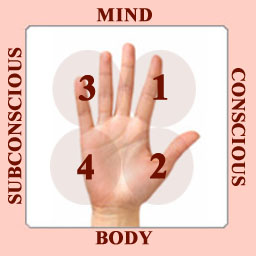 The Psychodiagnostic Chirology model of the human hand.
