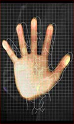 Vein pattern palm reading.