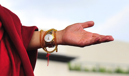 The Dalai Lama's left hand.