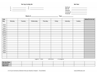 photograph relating to Weekly Planner Page called Finish Lifestyle Dice Planner/Diary Weekly Creating Webpage (Downloadable)