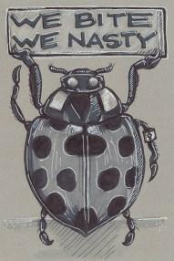 21 - Lady Bug
