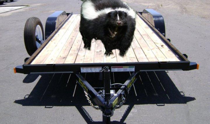 Skunky Trailer