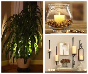 Indoor Plant Accent Light