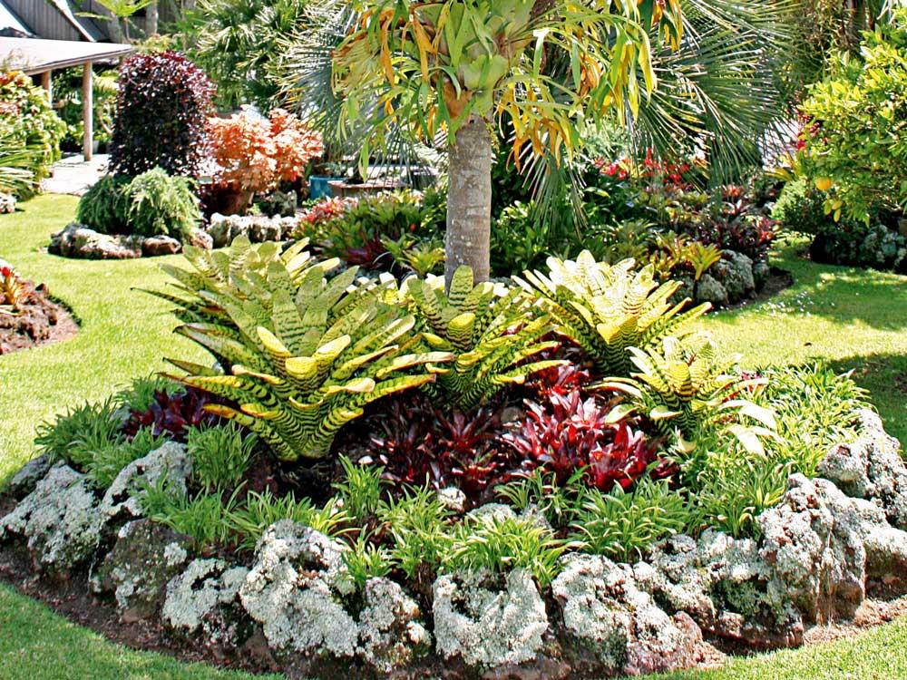 How To Plan A Tropical Garden - Australian Handyman Magazine on Tropical Backyard Landscaping  id=99203