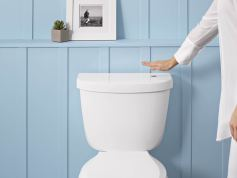 Touchless Flush