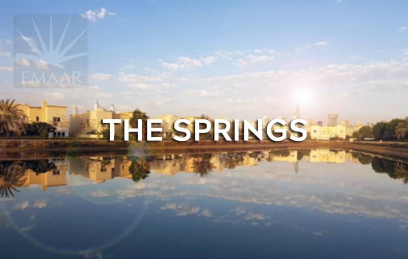 Handyman Springs Dubai