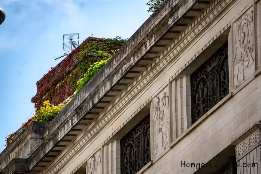 part of 99 kensington High street roof garden edge