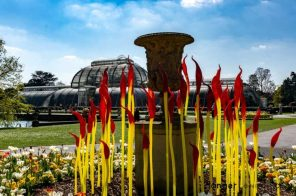 Paint brushes chihuly's red tip glass with yellow stems infront of the Palm house kew