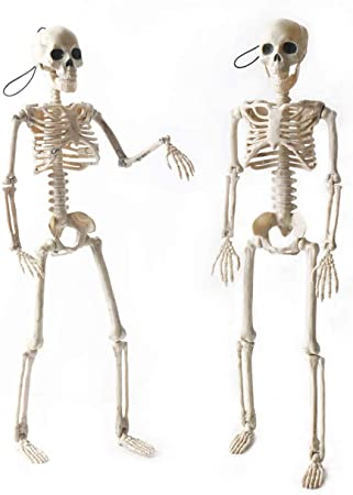 """OKPOW 2 PCS 16"""" Posable Halloween Skeletons 