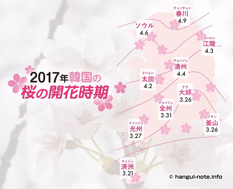 2017年韓国の桜開花・桜まつりの情報をチェック!