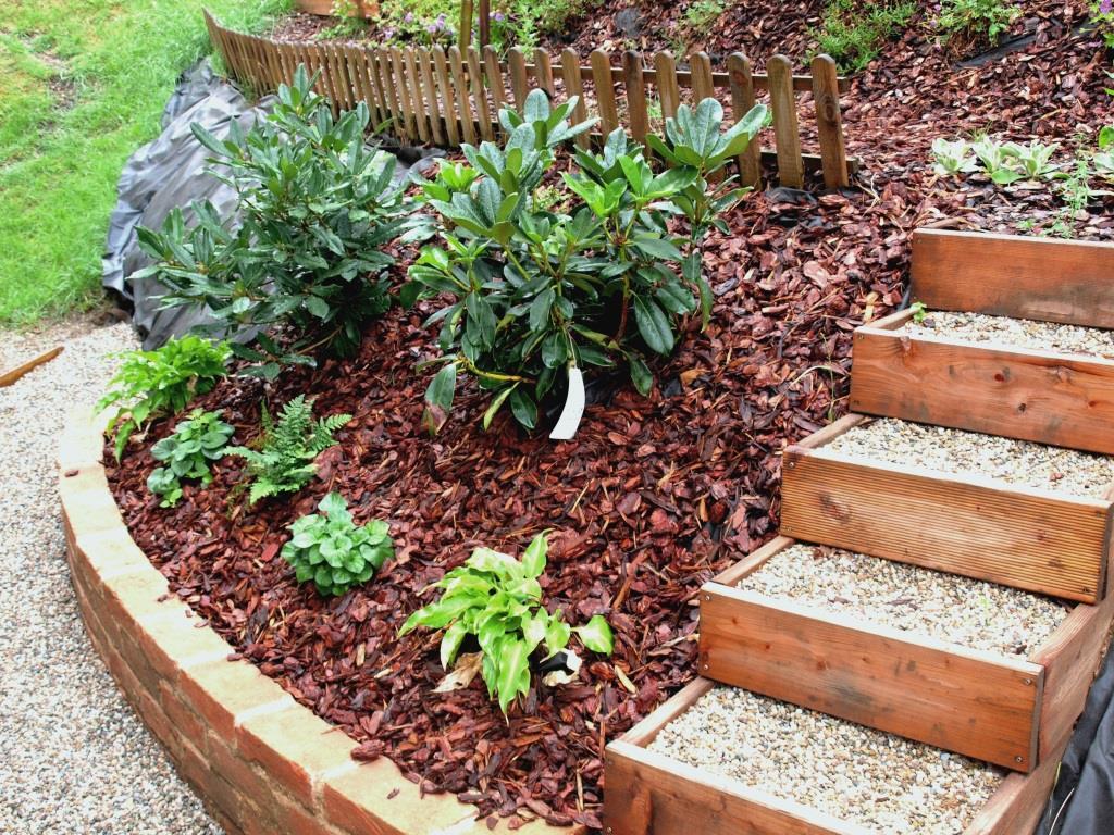 Meine Pflanzenauswahl und Tipps für den Schattengarten