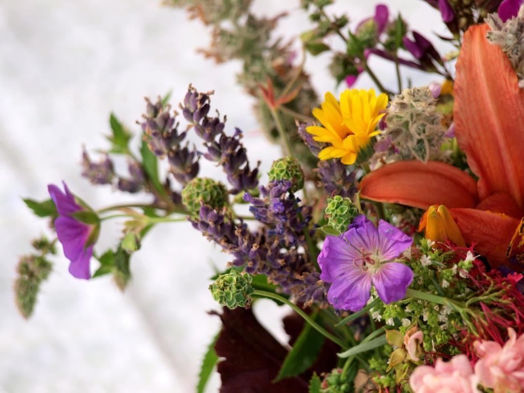 Juli-Blumenstrauß