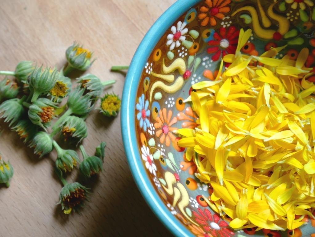 Ringelblumen Blütenblätter