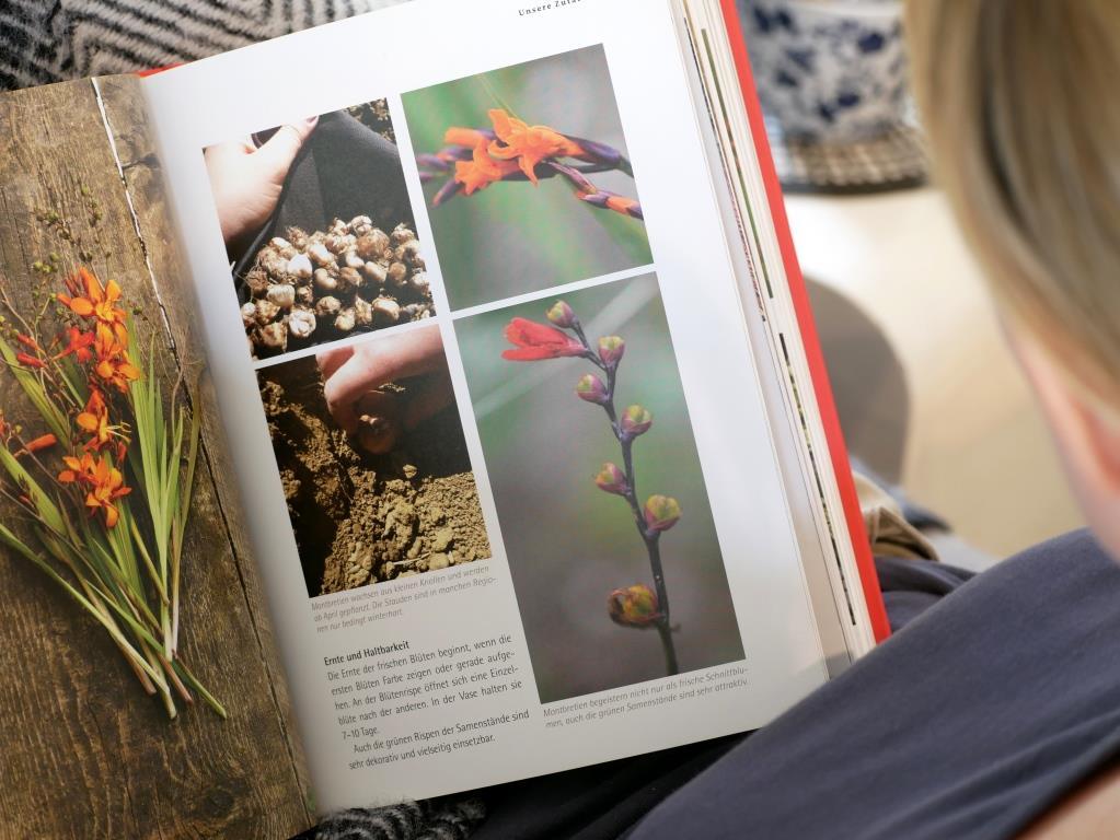 Die besten Schnittblumen vorgestellt
