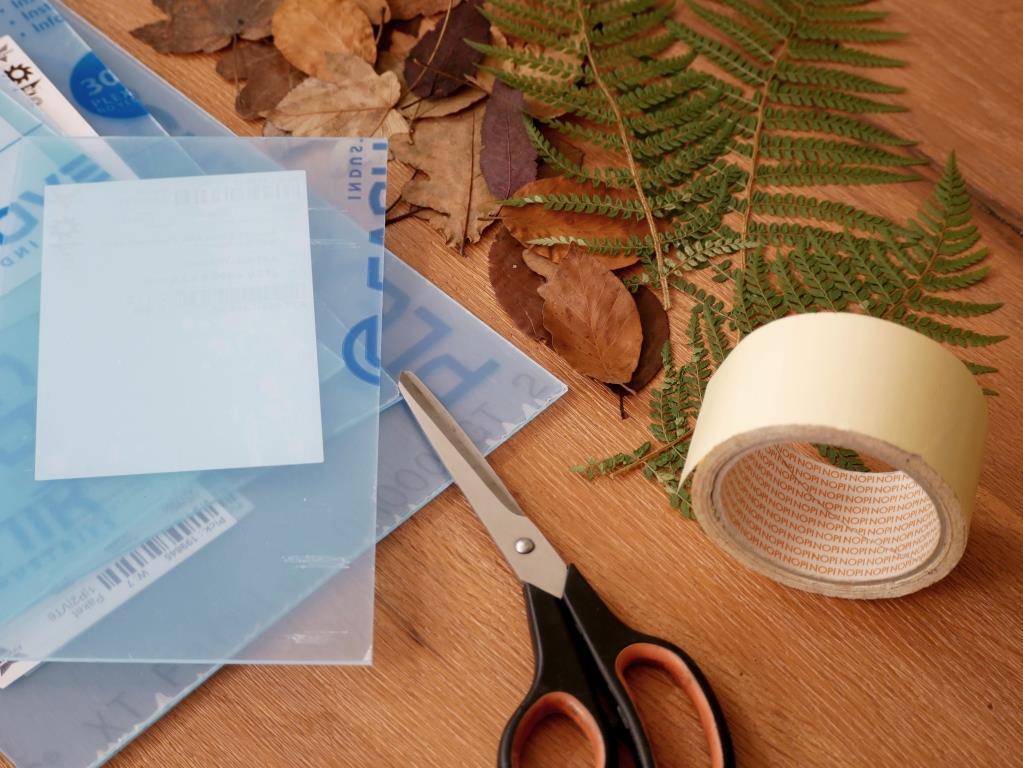 Das Material für die selbst gemachten Pflanzenbilder steht schon bereit