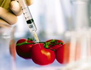 Μεταλλαγμένα ή γενετικά τροποποιημένοι οργανισμοί - Χανιώτικα Νέα 46064f80030