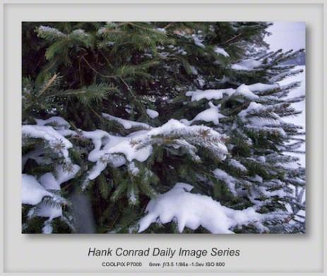 1/29/2013 Finally Snow in Illinois