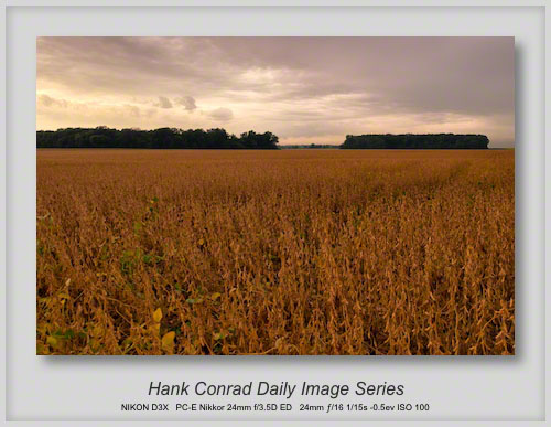 9/25/2013 Soybean Crop