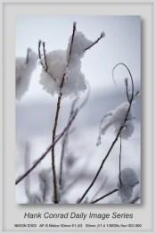12/18/2013 Let It Snow