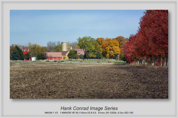 Illinois Horse Farm