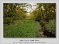 7 Image Story | Creek Flowing