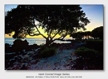 Big Island Sunsets   Rocky Tree