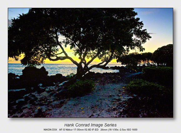 Big Island Sunsets | Rocky Tree