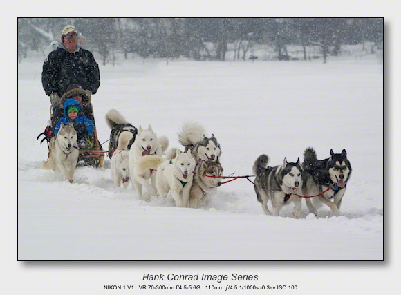 Snow Makes the Image | Husky Dogsled