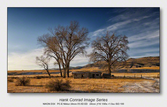 Crop or Not | Landscape 9x16